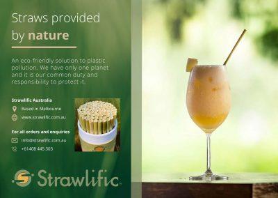 Strawlific – Layout Design